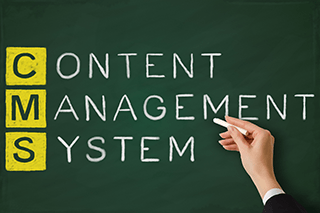 Website Content Management Services