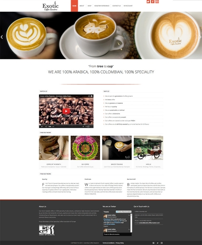 Website integrated into Wordpress with eCommerce store