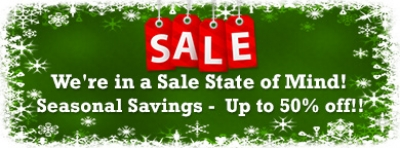 Sale banner for January Sales