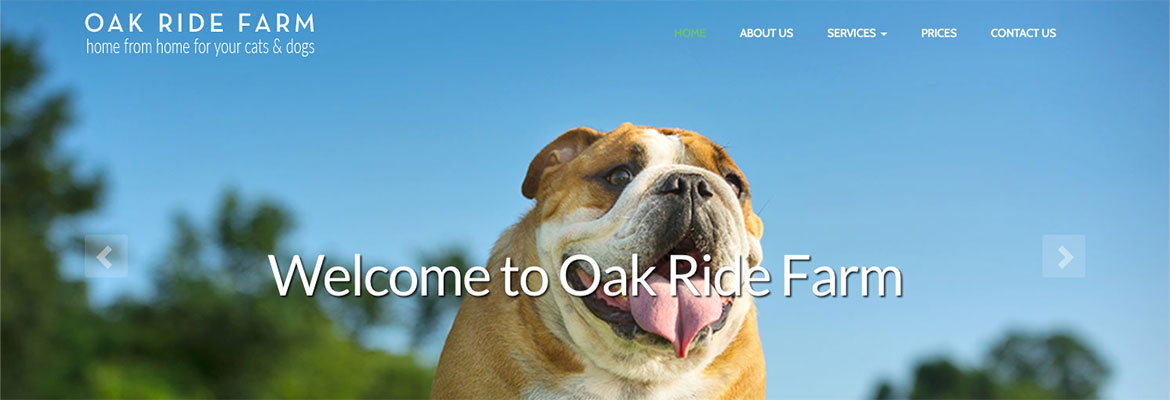 A new website build for a local dog kennels and cattery